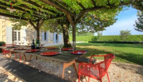Dining Under Vines